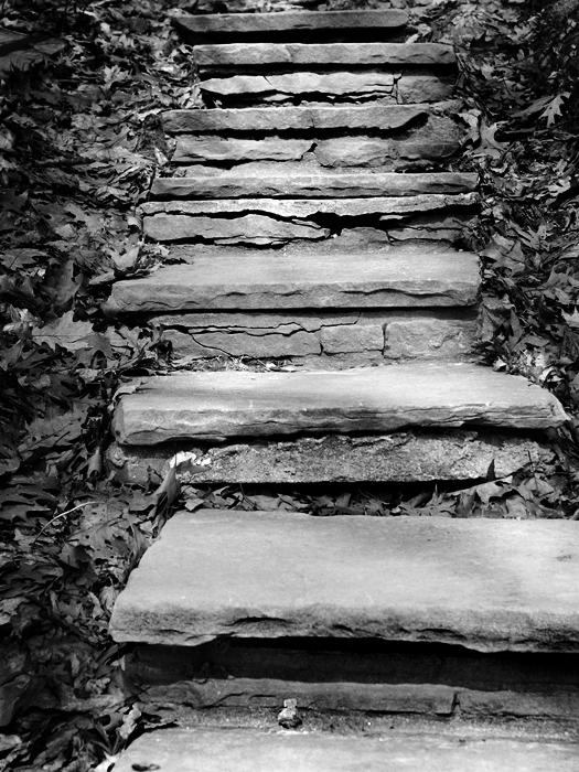 photoblog image Some random stairs