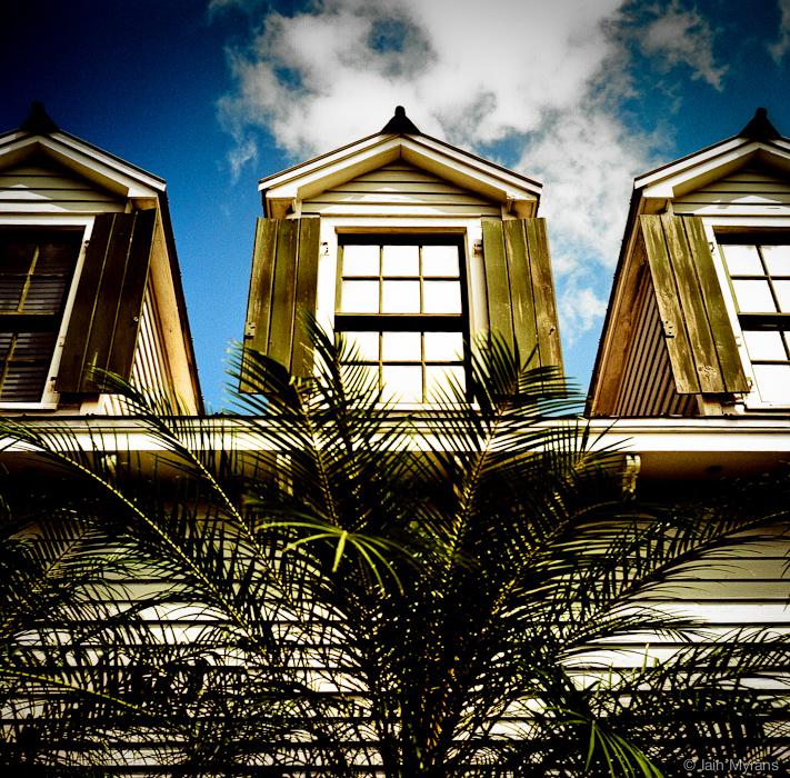 photoblog image Windows and Palm